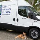 Lisbon's first animal ambulance 'ready for action'
