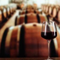 Algarve wine production to reach five-year high